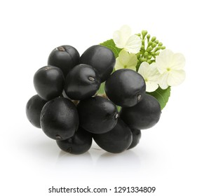 Elderberry isolated on white background, healthy food