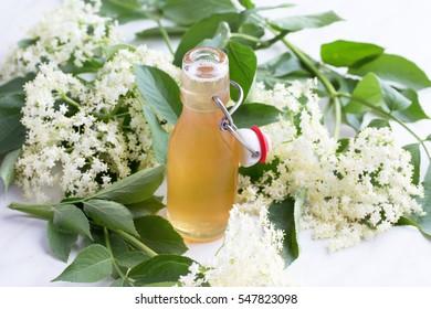 Elderflower syrup on table, homemade. With elderflowers. Natural light, selective focus.