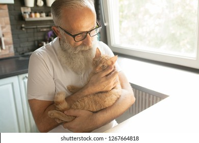 Elderly bearded man with his pet cat in a home setting.
