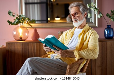 elderly bearded mature man read book at home, enjoy free time alone, sit on chair