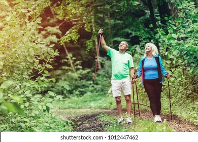 Elderly couple admiring nature and walking in the woods. Sportive lifestyle.