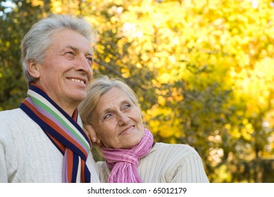 elderly couple in a autumn park