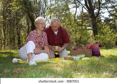 Elderly couple enjoying a leisure pic nic outdoors in the field