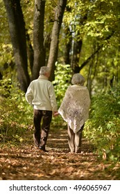 Elderly couple goes away through the alley in autumn park
