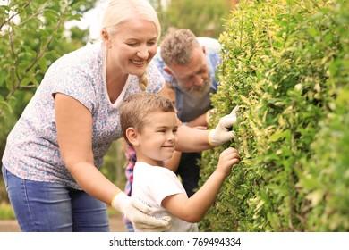 Elderly couple with grandson working in garden