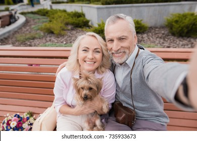An elderly couple makes selfie on a beautiful square. A woman is holding a small dog in her hands. They are happy. Couple sitting on the bench