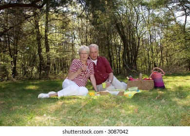 Elderly couple on a field having a picnic on a summerday