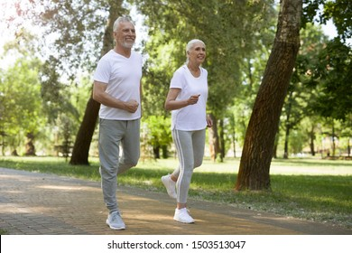 Elderly couple running peacefully together while enjoying fresh air. Website banner