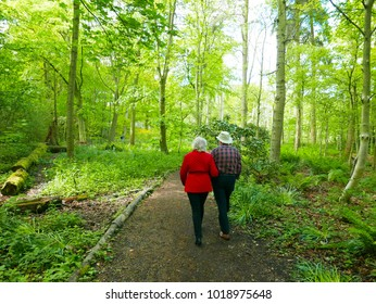 Elderly couple stroll along path through wooded area