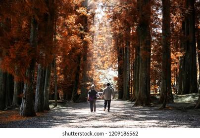 Elderly couple walk in park during fall season