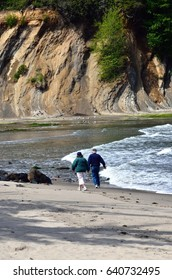 Elderly Couple Walking Their Dog In Sunset Bay State Park, Oregon