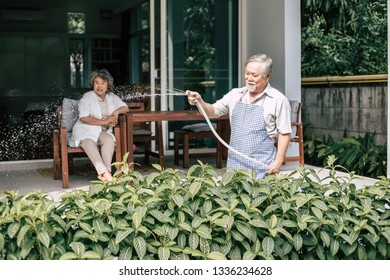 Elderly couple watering a flower in home garden
