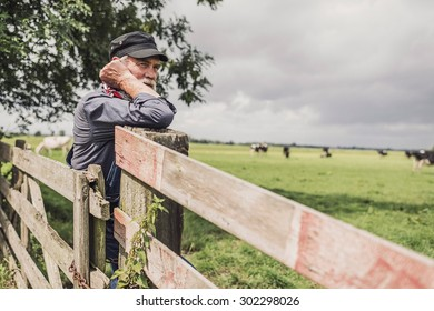 Elderly farm worker tending his cattle in the pasture standing leaning on a wooden fence with a serious contemplative expression