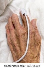 Elderly hand with a pulse meter on index finger