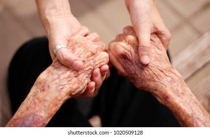 elderly lady and young girl holding hands, support for the elderly