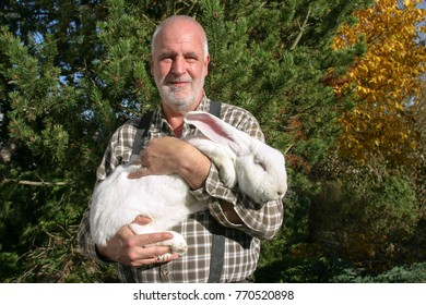 An elderly man ständing happily in his garden and  holds proudly his big white rabbit in his arms.