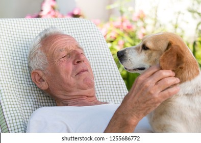 Elderly man resting in garden with dog on his chests