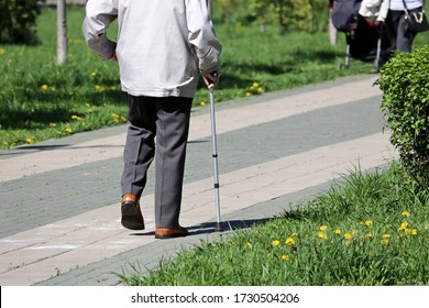 Elderly man walking with a cane in a city spring park. Concept of limping, diseases of the spine