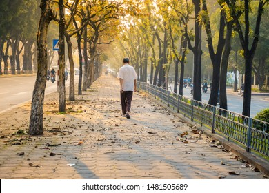 An elderly man is walking through sidewalk among trees in the early morning on Hanoi street