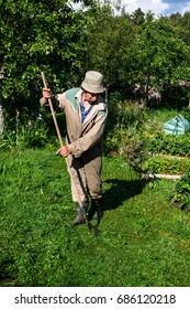 An elderly man is working in the garden