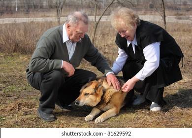 Elderly pair caresses a dog