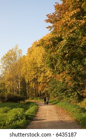 elderly pair walking along the path in an autumn park