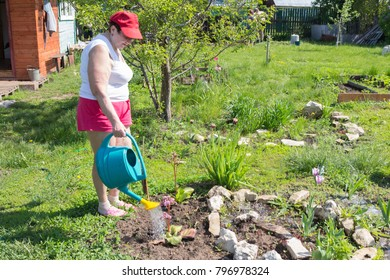 An elderly pensioner at the dacha watering young plants on a summer sunny day