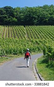 Elderly woman hiking among the vineyards