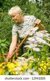 The elderly woman works in a garden among flowers in a summer sunny day
