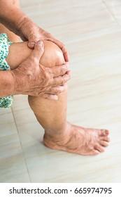 elderly women with knee osteoarthritis
