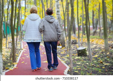 Elderly women and man in jeans walk in park at autumn day, back view