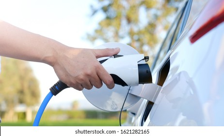 Electric car or ev is charging at station . man use the white power cable and plug on nature background. eco and clean energy concept with the mobile phone smart technology. zero gas no transmission