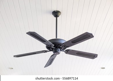 Electric ceiling fan