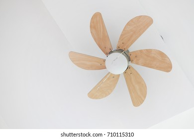 Electric ceiling fan with lamp