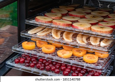 Electric drying machine for dehydration of products with horizontal loading of pallets. There are apples, bananas, apricots and cherries on the pallets. Close-up, natural light.