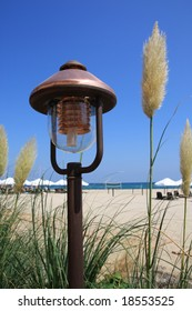 The electric lamp and grass on the beach.