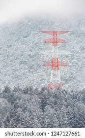 electric pole Power post with winter Landscape of Pine Forest at Nagano Chubu Japan