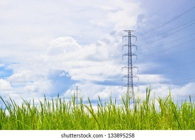 Electric poles on the environment