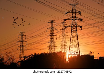 Electric Power pylon with flock birds at Sunset.