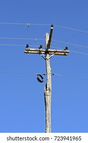 Electric power transmission pole made from raw tree trunk, in the Brazilian countryside