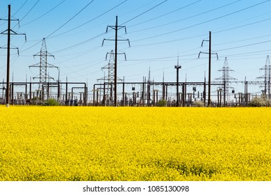 Electric substation and yellow rape field. Landscape in the colors of the flag of Ukraine