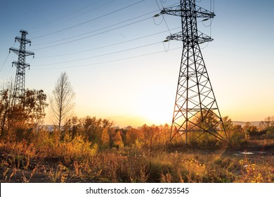 Electric transmission lines in the forest