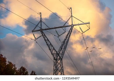 Electric wires and metallic electricpole against the yellow sky in Finland. In the background, there are flying swans.