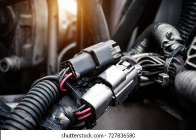 Electrical connection electronics.Electronic Circuits Connectors.System of hydraulic engine.Electrical connection of the engine system