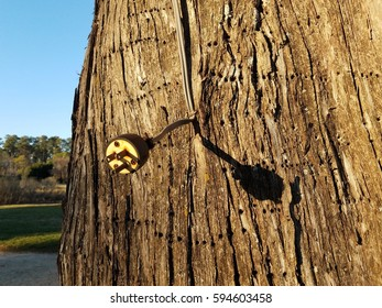 electrical cord with prongs on tree