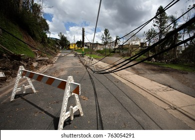Electrical lines in Puerto Rico after Hurricane Maria