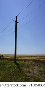 Electrical pillar on the field of wheat.