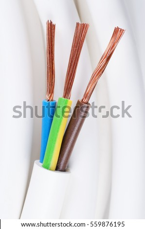 Fabulous Electrical Power Cable Close Up Iec Stock Photo Edit Now 559876195 Wiring Cloud Oideiuggs Outletorg