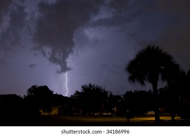 Electrical storm at night near homes with a palm tree in foreground