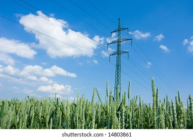 Electrical tower on a background of the corn field